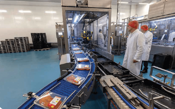 productielijn hoogvliet